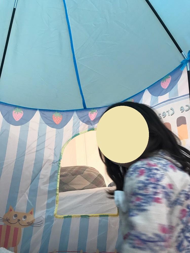 フライングタイガーのテントの中の様子